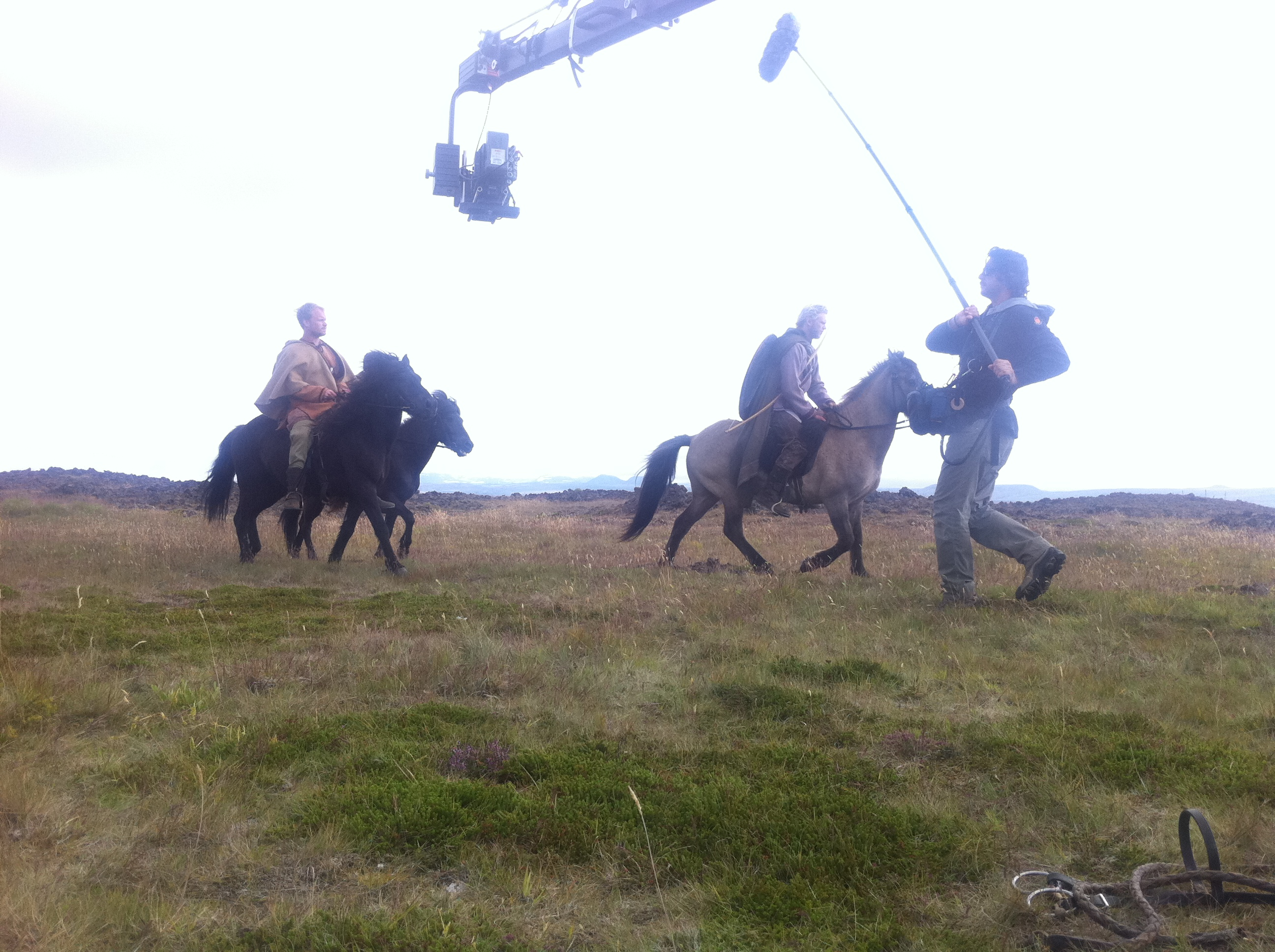 Hestar og alex